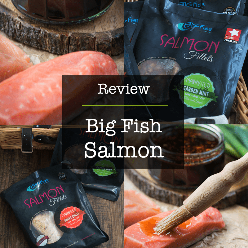 Review of Big Fish Salmon