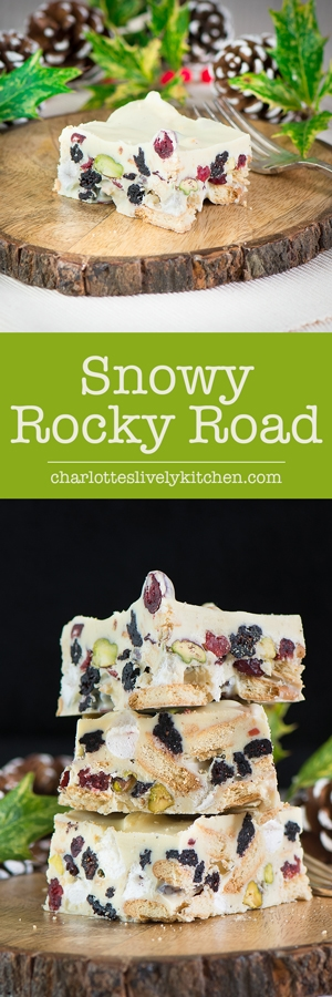 snowy rocky road pin