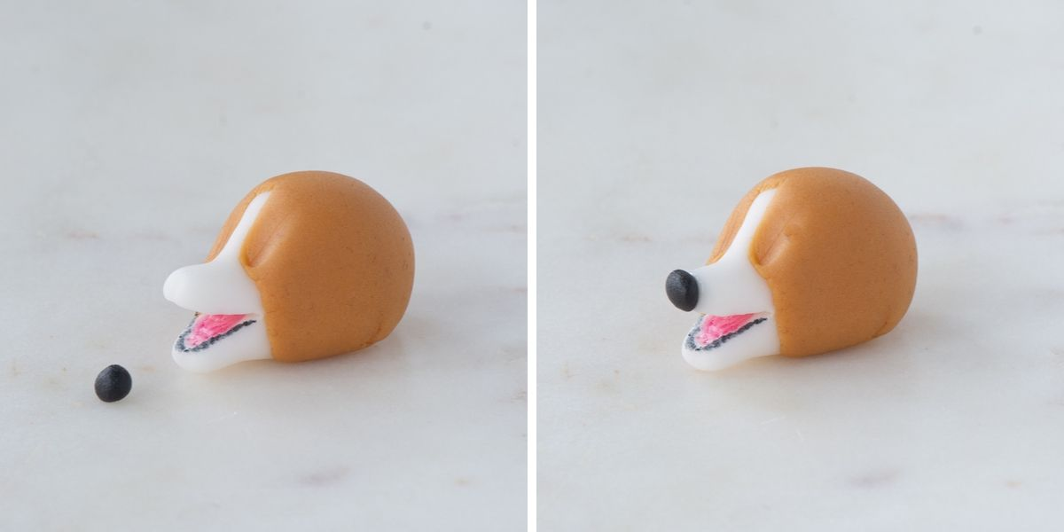 Add the nose to the fondant corgi.