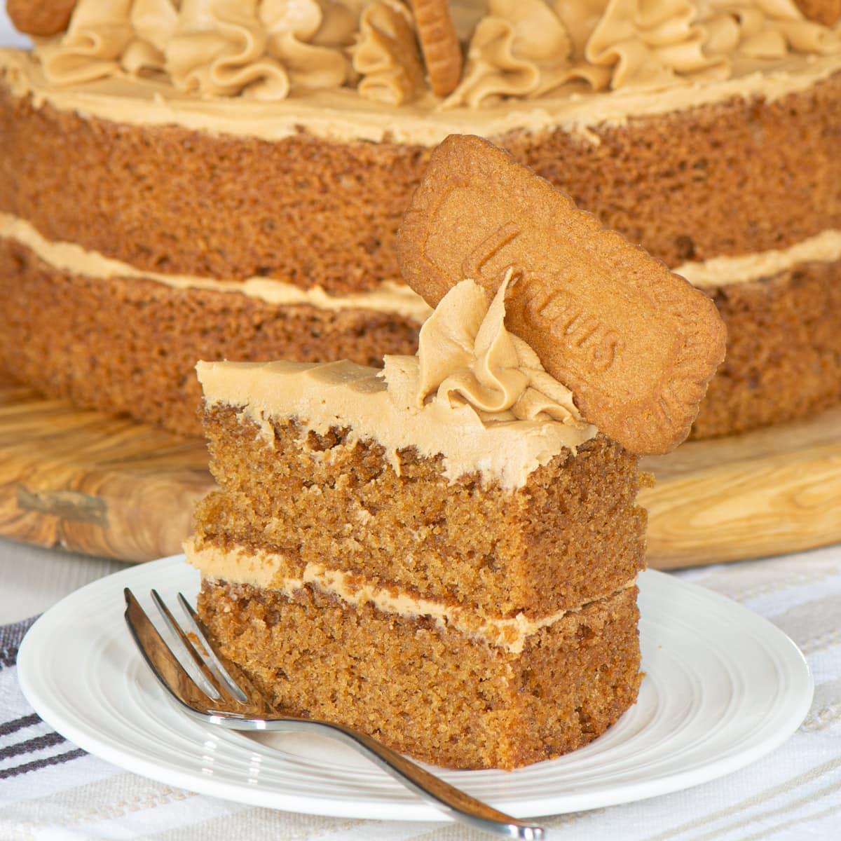 A slice of Biscoff cake.